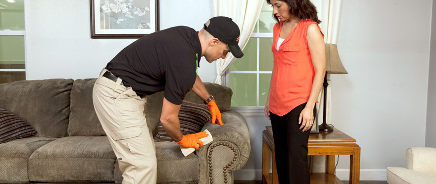 Gurnee, IL carpet upholstery cleaning