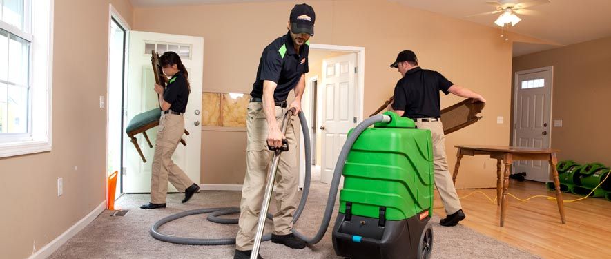 Gurnee, IL cleaning services